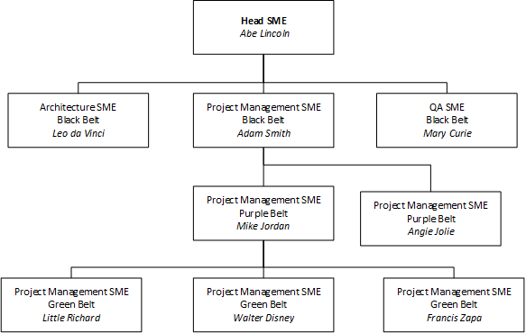 SME – the Subject Matter Expert